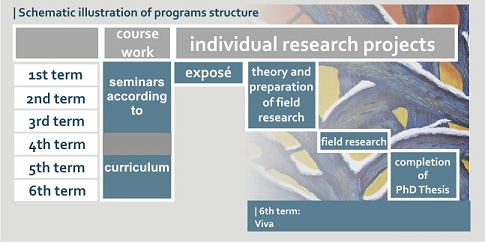phd-structure-s
